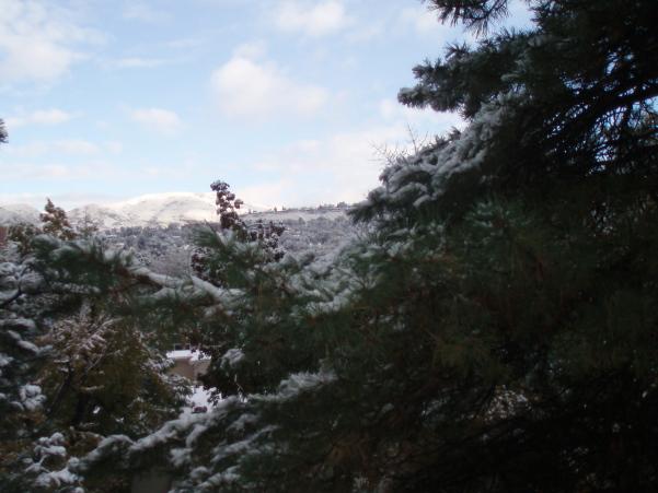 first_snow.jpg