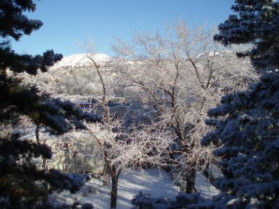 snow_day2.jpg